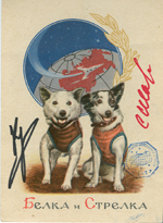 # sd099 Belka-Strelka old 1961 flown in space postcard